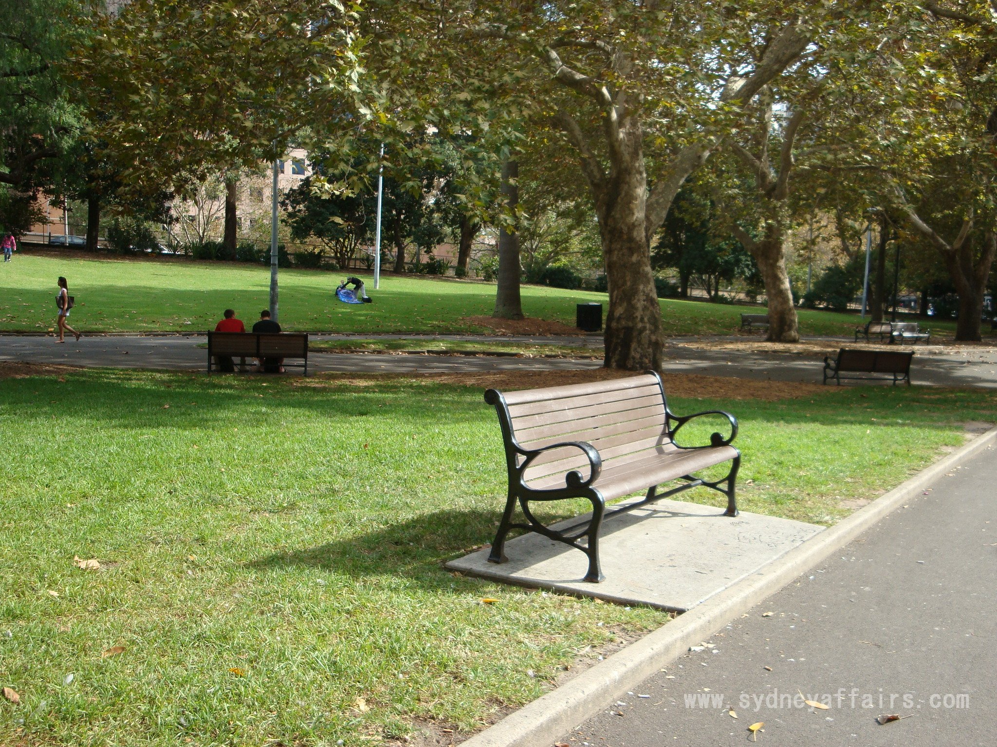 Belmore Park Sydney park bench