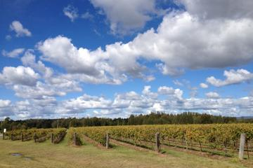 hunter valley wineries and wilderness small group tour in sydney 158047