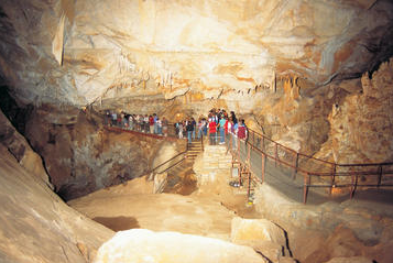 Blue Mountains and Jenolan Caves Motorcoach Day Tour 1