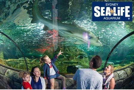 SEA LIFE Sydney Aquarium Entry Discount Deals