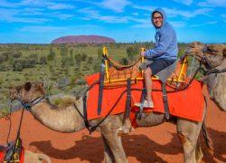 Uluru Camel Express Sunrise or Sunset Tour photos