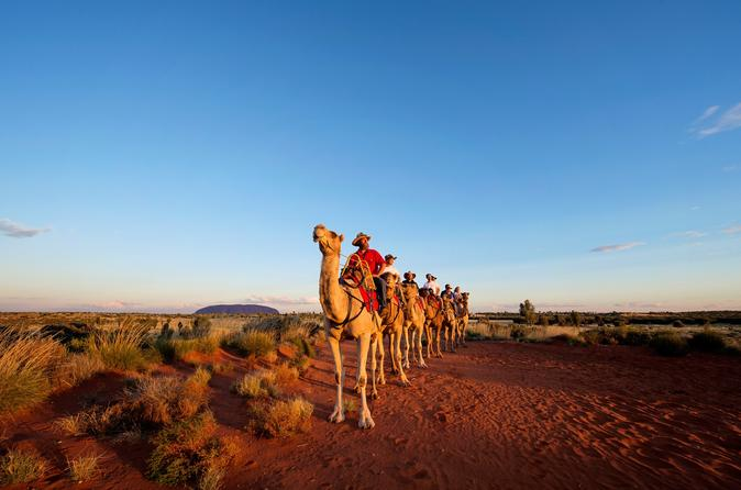 Uluru Camel Express, Sunrise, or Sunset Tours